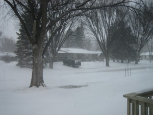 Blizzard 12/15/2008